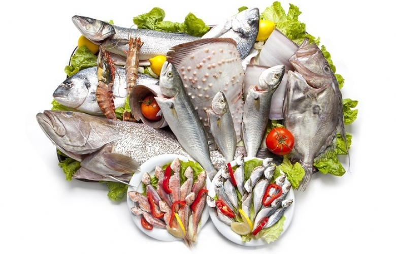 Kuruçeşme Atlas Balık