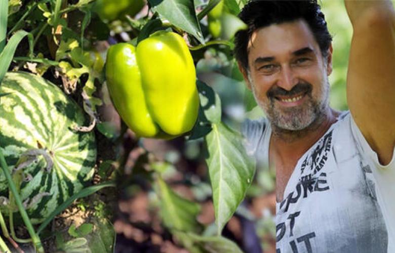 Mahsulleri toplamaya başladı! Ünlü oyuncu Burak Hakkı organik tarım yapıyor